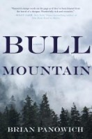 Review: Bull Mountain